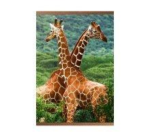 Пленочный обогреватель Домашний очаг Жирафы